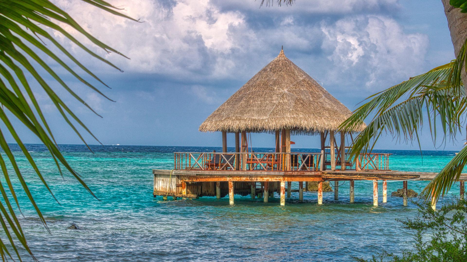 tropical-dreams